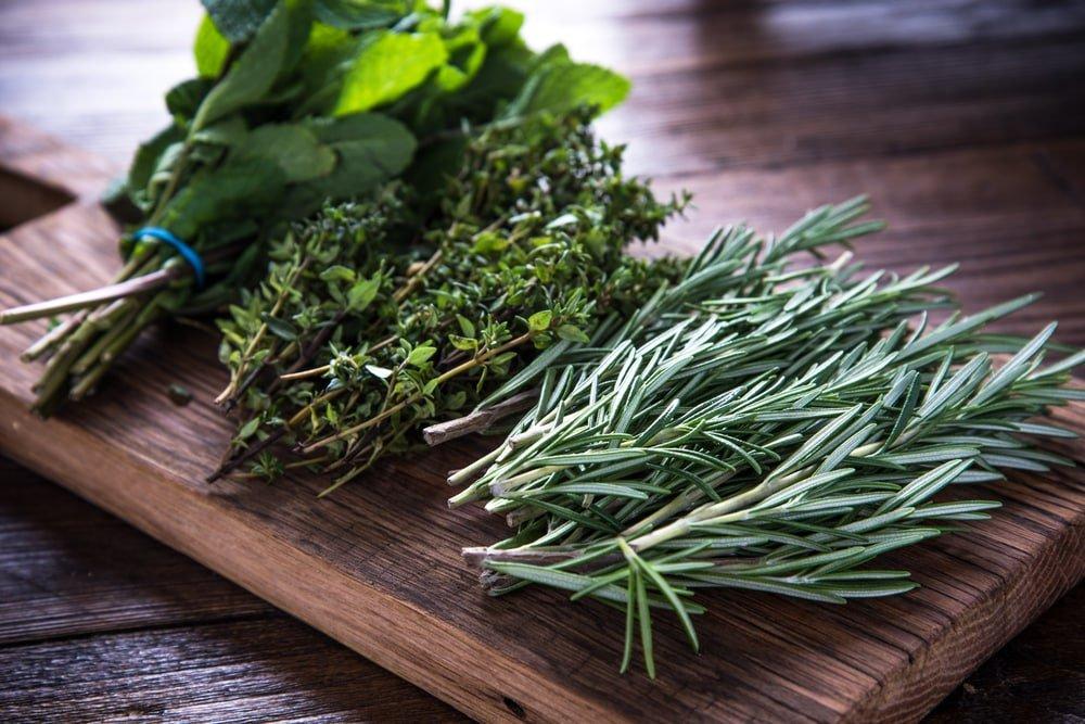 10 kryddor du kan odla inomhus året runt