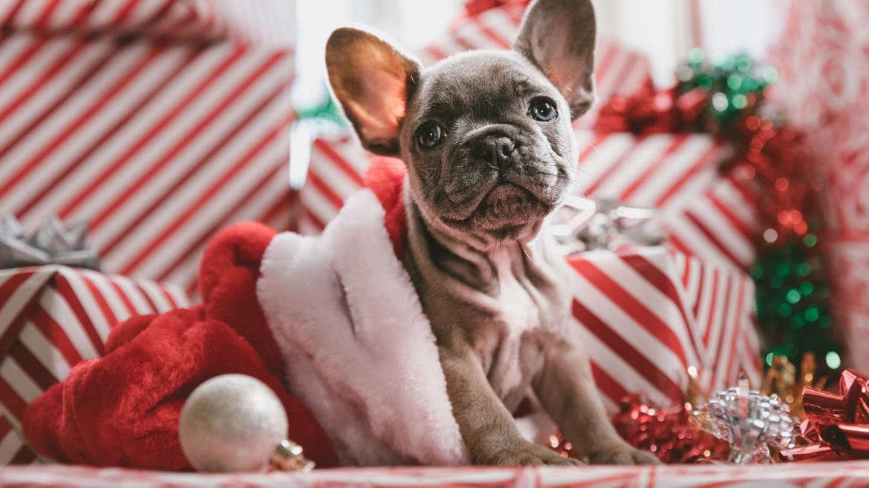 Julstädning på mindre än 30 minuter